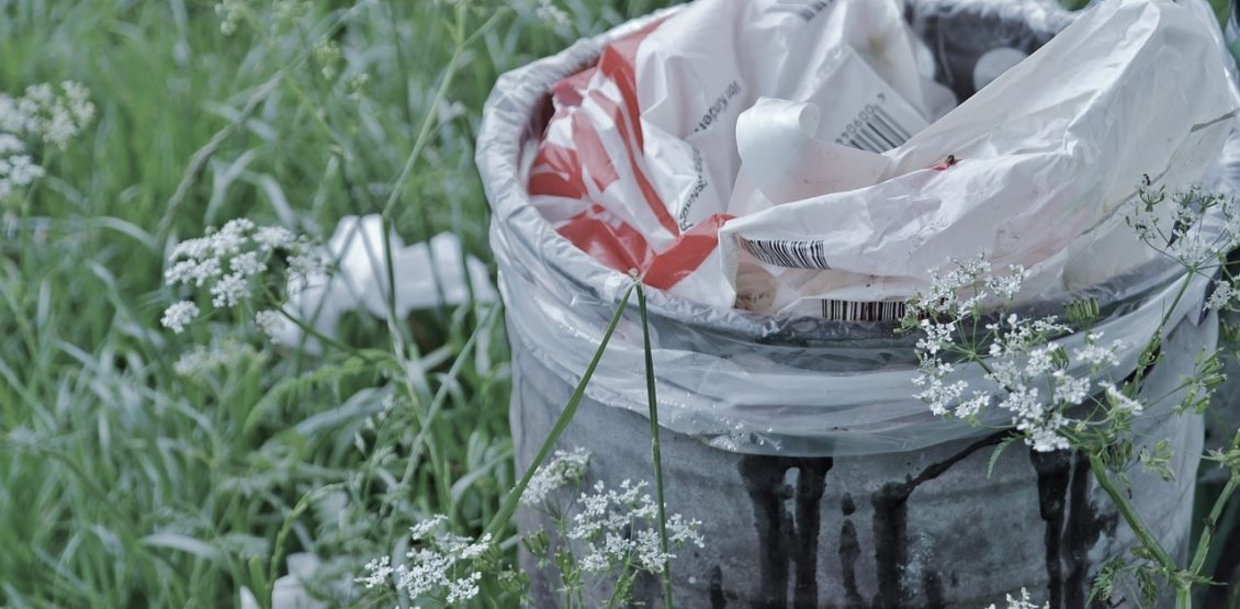 13 billion tons of waste accumulated in landfills of Ukraine